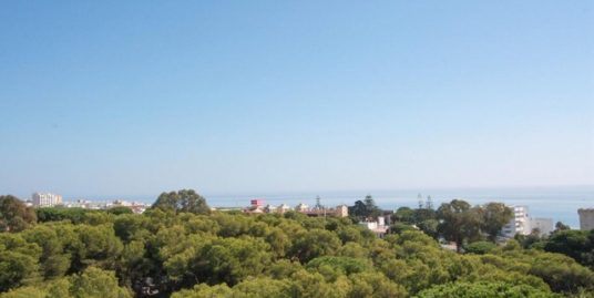 1 Bed Apartment in Calahonda