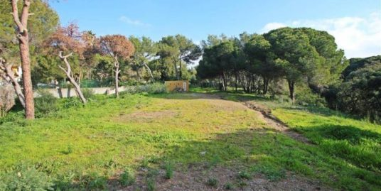 0 Bed Plot – Residential in Las Chapas